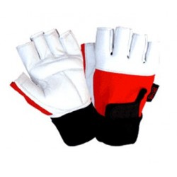 Weight lifting Gloves 2019